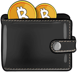 Bitcoin cryptocurrency wallet NZ