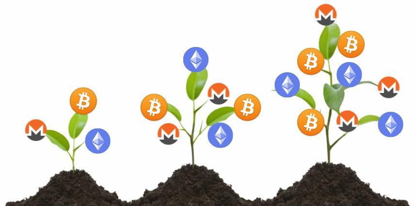 Bitcoin Ethereum Monero Farming NZ